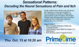 Sensational Patterns: Decoding the Neural Sensations of Pain and Itch