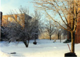 Bodien and Edgren Halls in winter