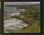 Hawaii and California Box 7 Image 034